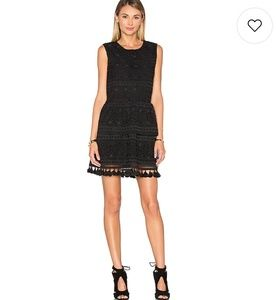 Anine Bing lace mini dress